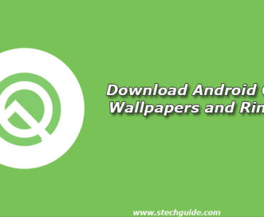 Download Android Q Stock Wallpapers and Ringtones