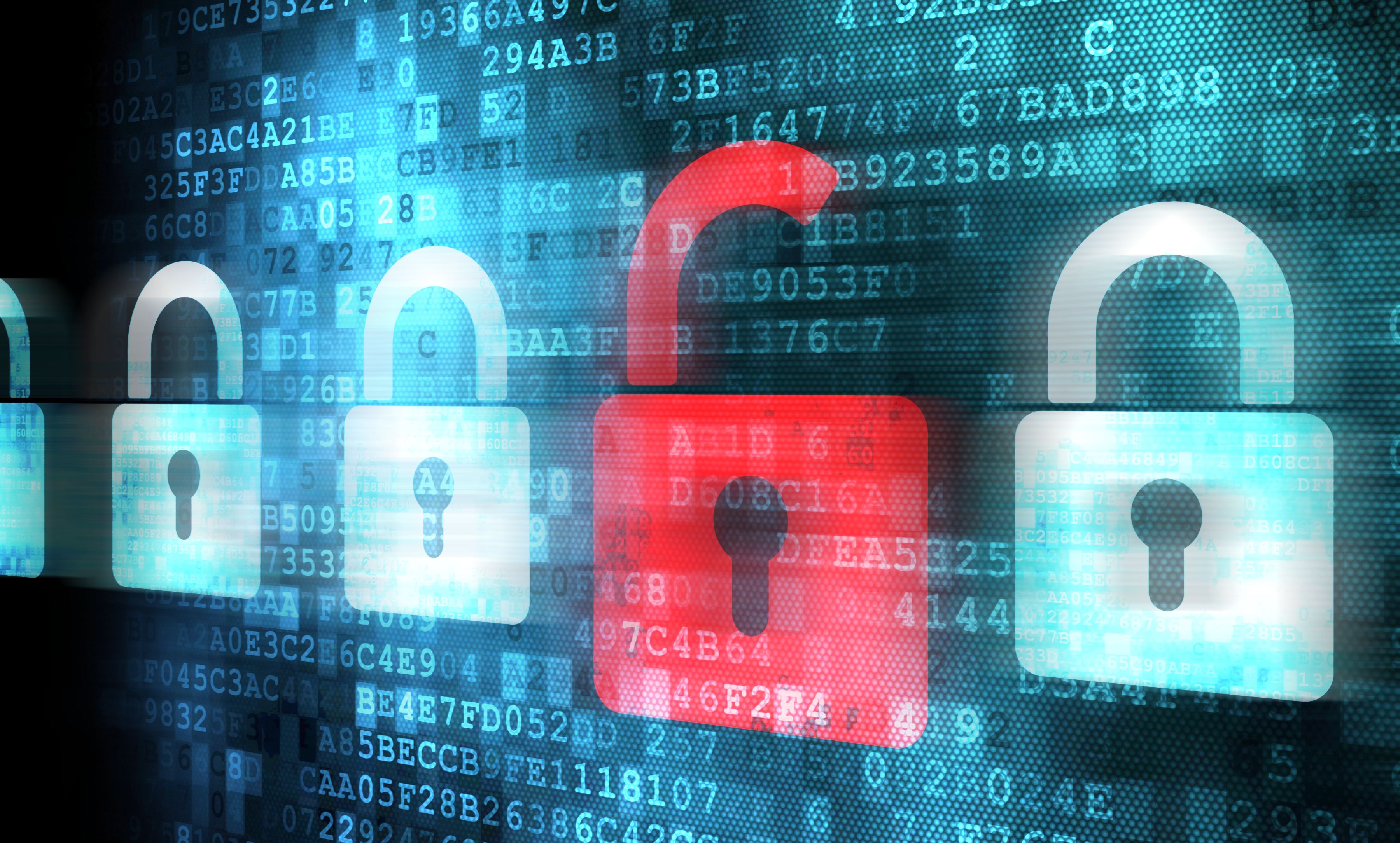 How To Start A Career In Cyber Security?